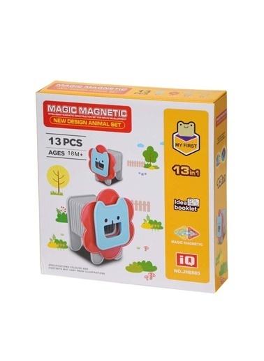 Birlik Oyuncak Birlik Oyuncak Jh8985 Manyetik Aslan 13 Parça Çocuk Blok Seti Renkli